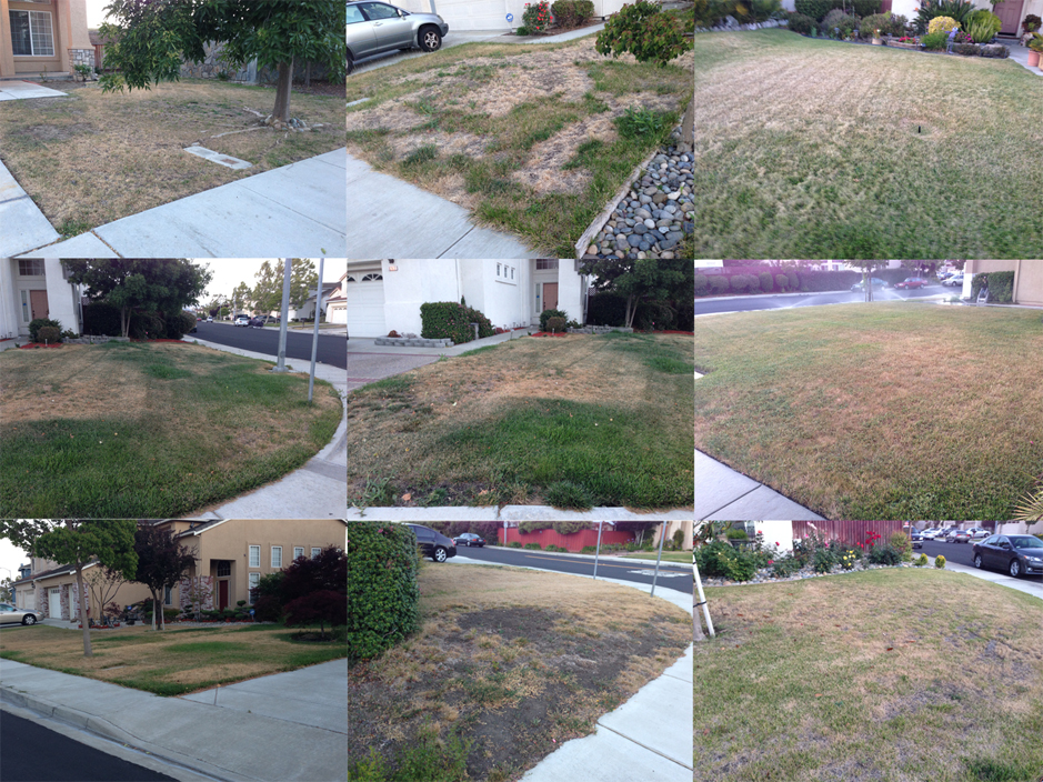 syntheticgrass California drought worsening: New water restrictions carry penalty of up to $500