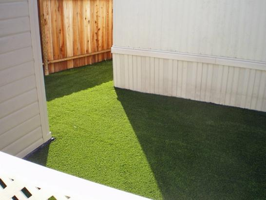 Artificial Grass Photos: Artificial Animal Shelter Palatine Illinois Installation