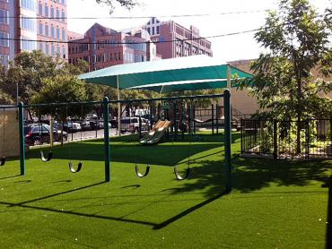 Artificial Grass Photos: Artificial Grass Chicago Ridge Illinois  Kids Care  Front