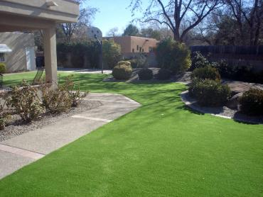 Artificial Grass Photos: Artificial Grass Elmwood Park Illinois  Landscape