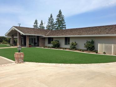 Artificial Grass Photos: Artificial Grass Hillside Illinois  Landscape  Front Yard