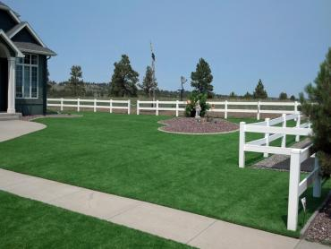 Artificial Grass Photos: Artificial Grass Midlothian Illinois Lawn  Back Yard