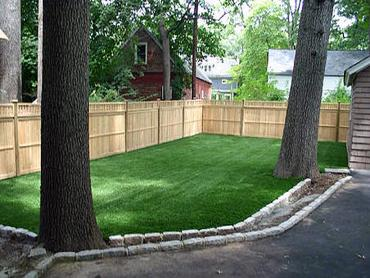 Artificial Grass Photos: Artificial Pets Areas South Holland Illinois Installation