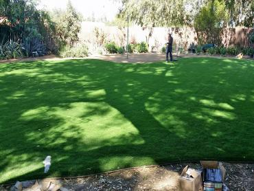 Artificial Grass Photos: Artificial Turf East Hazel Crest Illinois  Landscape  Front