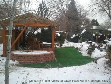 Artificial Grass Photos: Artificial Turf Forest View Illinois Lawn