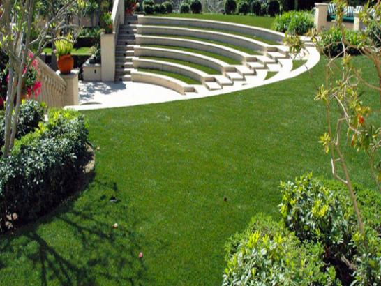 Artificial Grass Photos: Artificial Turf Rolling Meadows Illinois Lawn  Front Yard