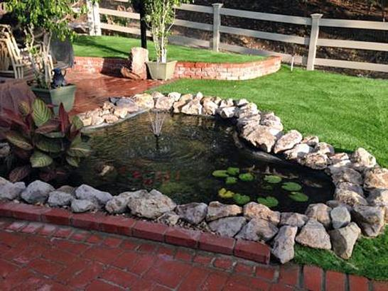 Artificial Grass Photos: Artificial Turf Schaumburg Illinois Lawn  Front Yard