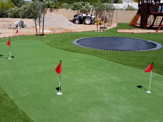 Artificial Turf Sleepy Hollow, Illinois Home Putting Green, Backyards artificial grass