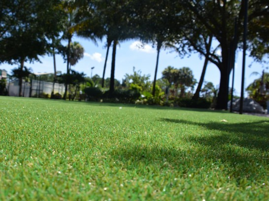 Artificial Grass Photos: Best Artificial Grass Barrington, Illinois Paver Patio, Recreational Areas