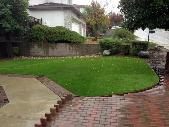 Artificial Grass Photos: Fake Grass Glendale Heights Illinois  Landscape  Back Yard
