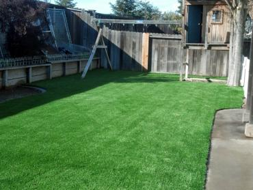 Artificial Grass Photos: Fake Grass Lombard Illinois Lawn  Back Yard