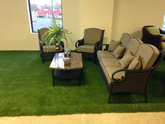 Artificial Grass Photos: Fake Grass Mokena Illinois Lawn  Commercial Landscape