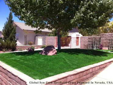 Fake Grass Oak Park Illinois  Landscape artificial grass