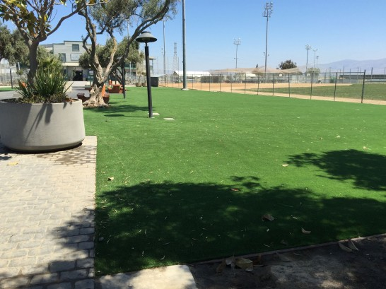 Artificial Grass Photos: Fake Lawn Montgomery, Illinois Garden Ideas, Parks
