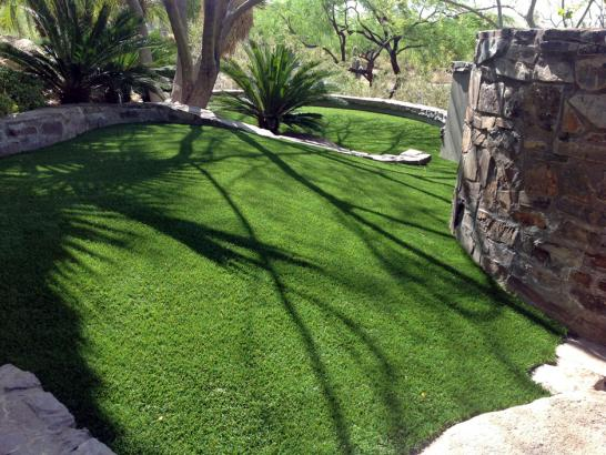 Fake Pet Turf Woodridge Illinois Installation  Dogs Front artificial grass