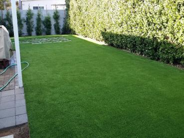 Artificial Grass Photos: Fake Pets Areas East Hazel Crest Illinois for Dogs  Pavers