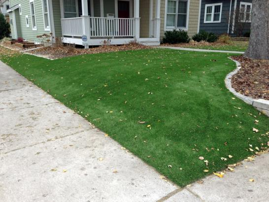 Artificial Grass Photos: Fake Turf Glenwood Illinois  Landscape   Fountans Back Yard