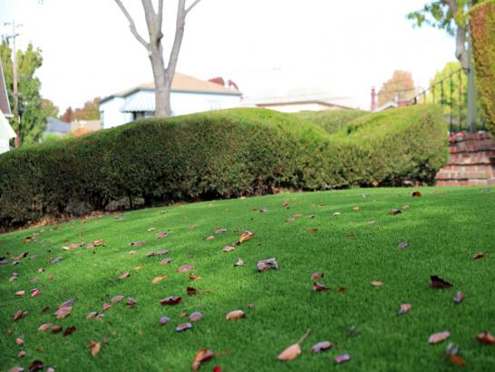 Artificial Grass Photos: Fake Turf Naperville Illinois  Landscape  Front Yard