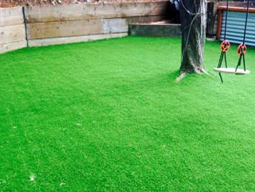 Artificial Grass Photos: Fake Turf Westmont Illinois  Kids Care  Commercial Landscape