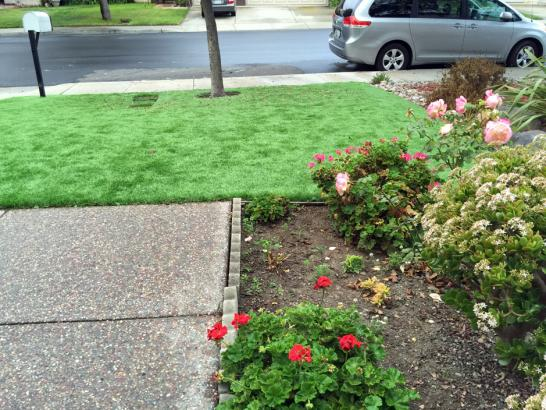 Artificial Grass Photos: Fake Veterinary Clinic Frankfort Illinois Installation  Front