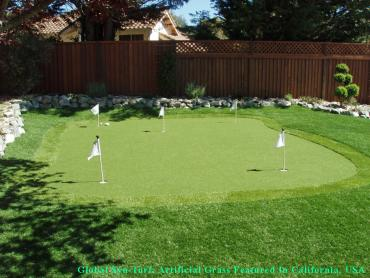 Golf Putting Greens Berwyn Illinois Artificial Turf artificial grass