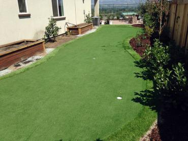 Artificial Grass Photos: Golf Putting Greens Burr Ridge Illinois Synthetic Turf  Front