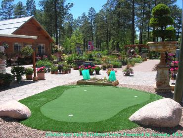 Golf Putting Greens Cicero Illinois Synthetic Grass artificial grass