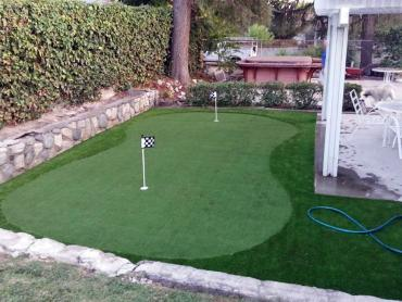 Artificial Grass Photos: Golf Putting Greens Goodings Grove Illinois Synthetic Turf