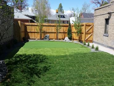 Artificial Grass Photos: Golf Putting Greens Harwood Heights Illinois Synthetic Turf