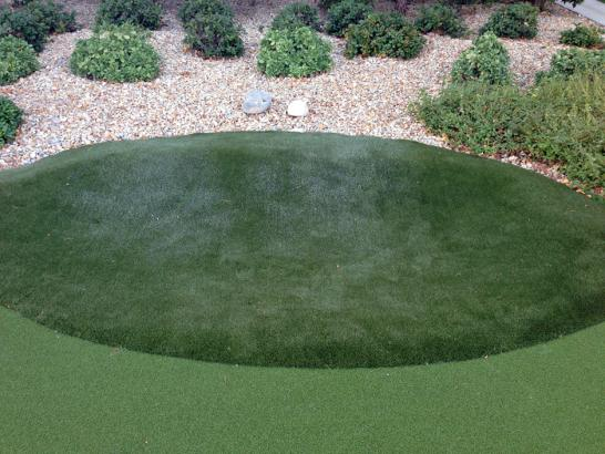 Artificial Grass Photos: Golf Putting Greens Lisle Illinois Artificial Grass