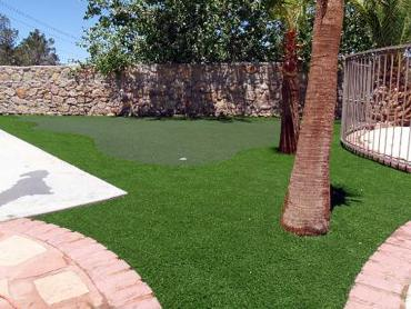 Golf Putting Greens Orland Park Illinois Fake Grass  Back artificial grass