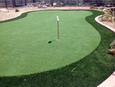 Artificial Grass Photos: Golf Putting Greens Thornton Illinois Synthetic Turf  Back