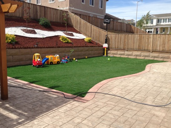 Artificial Grass Photos: Grass Carpet Rockdale, Illinois Athletic Playground, Backyards