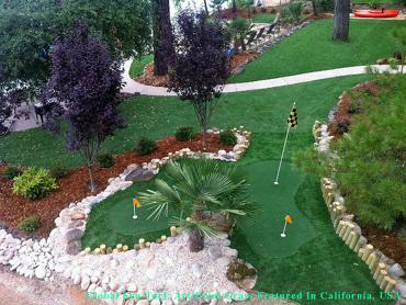 Putting Greens Cicero Illinois Synthetic Turf artificial grass