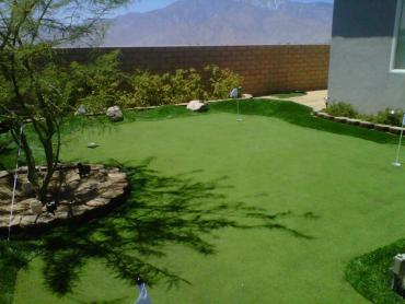 Artificial Grass Photos: Putting Greens Golf Illinois Synthetic Turf  Back Yard