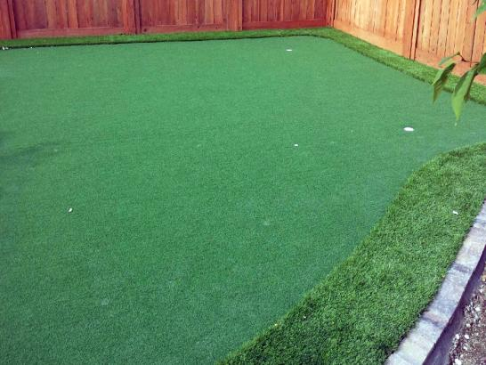 Artificial Grass Photos: Putting Greens South Chicago Heights Illinois Artificial