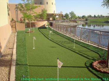 Putting Greens Stickney Illinois Fake Grass artificial grass