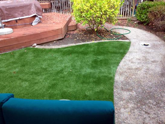 Artificial Grass Photos: Synthetic Grass Bannockburn Illinois  Landscape  Front Yard