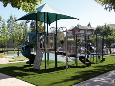 Artificial Grass Photos: Synthetic Grass Bellwood Illinois Kindergarten  Front Yard
