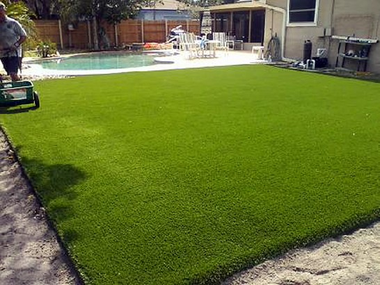 Artificial Grass Photos: Synthetic Grass Burns Harbor Indiana Lawn