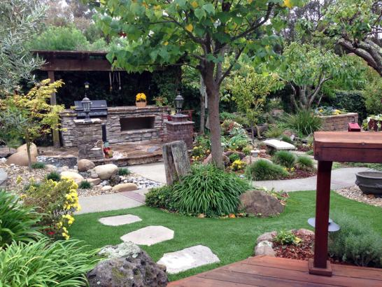 Artificial Grass Photos: Synthetic Grass Gary Indiana Lawn  Front Yard