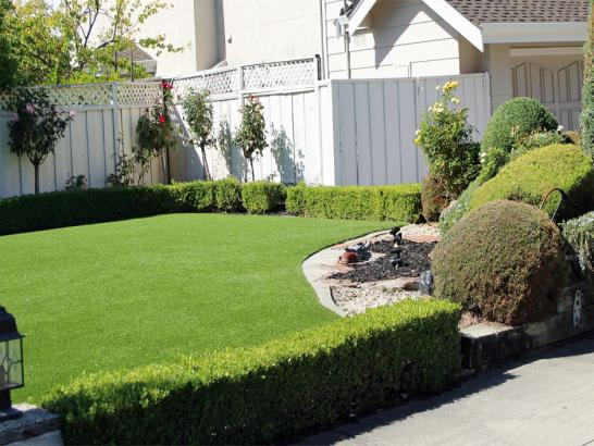 Artificial Grass Photos: Synthetic Grass Highwood Illinois  Landscape  Back Yard
