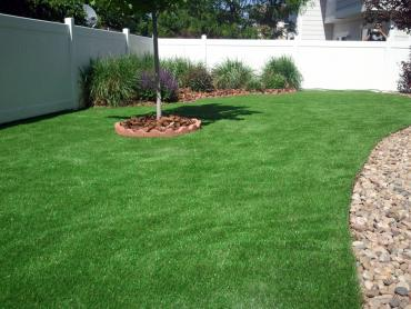Synthetic Grass Hometown Illinois  Landscape artificial grass