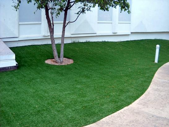 Artificial Grass Photos: Synthetic Grass Lynwood Illinois Lawn