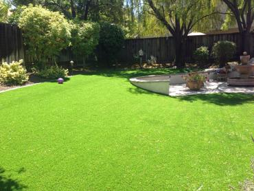 Synthetic Grass Melrose Park Illinois  Landscape  Front Yard artificial grass