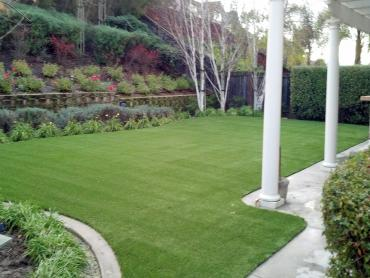 Artificial Grass Photos: Synthetic Pet Grass Palos Park Illinois Installation  Front