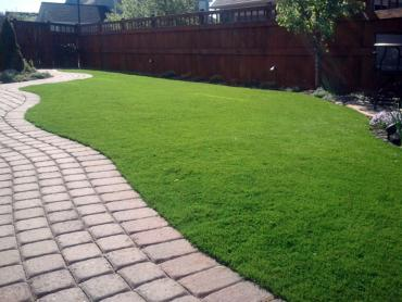 Artificial Grass Photos: Synthetic Pets Areas Brookfield Illinois for Dogs  Front