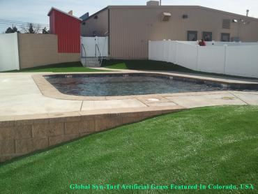 Artificial Grass Photos: Synthetic Turf Berwyn Illinois Lawn