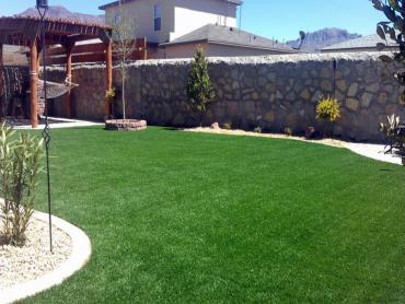 Artificial Grass Photos: Synthetic Turf Clarendon Hills Illinois  Landscape