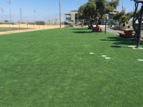 Synthetic Turf Fox River Grove, Illinois Lawn And Landscape, Parks artificial grass